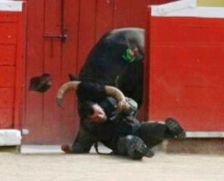 Efectivo militar fue embestido por un toro en la Monumental de Mérida