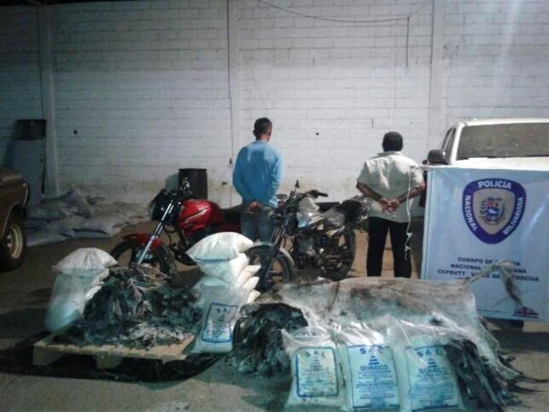 PNB descubrió matadero clandestino de burros en Espino