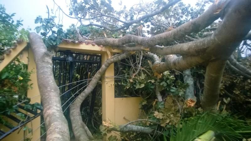 Vientos huracanados causaron daños  en Valle de la Pascua